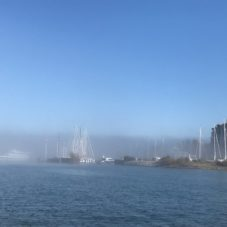 Bodensee Nebelwetter Bootsfahrschule CaptainsMarine Bottighofen (4)