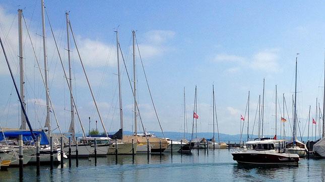 Bootsfahrschule am Bodensee CaptainsMarine am Hafen Bottighofen